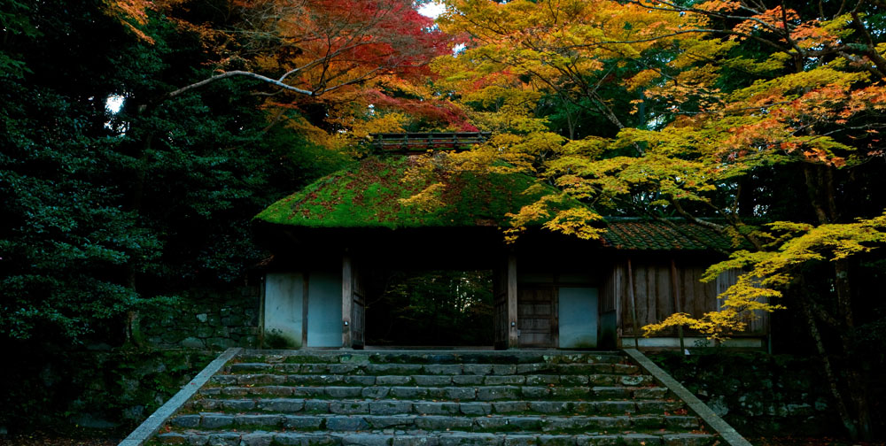 bobo121作品:京都的秋色