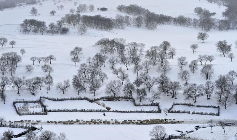 ent30作品:冬天里的传说