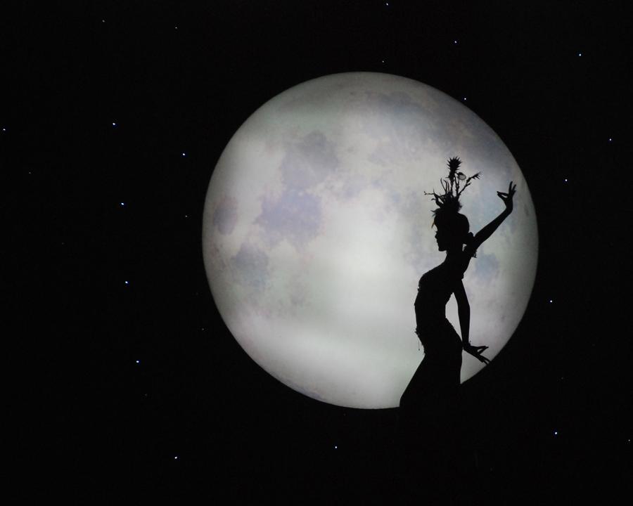 尘世镜缘作品:月孔雀