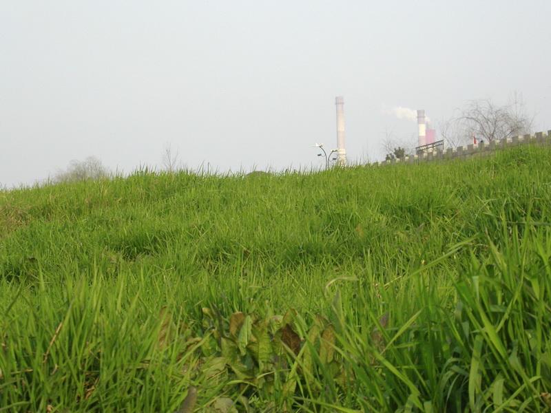 mynamecjr作品:绿地与烟囱