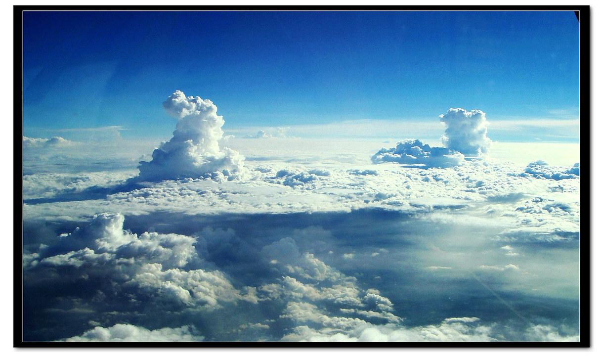 世纪金鼎作品:云之上