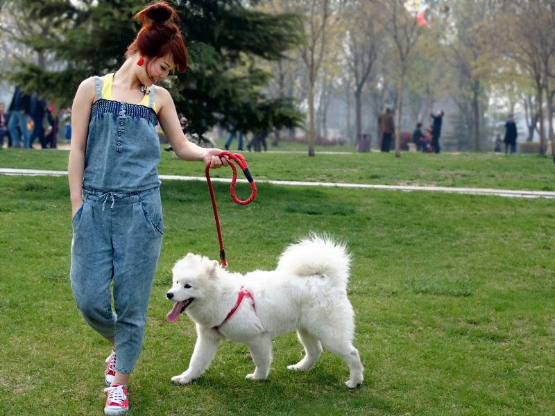 女人与狗欢爱_女性与狗行为图片_女性与狗行动态图片_女性与狗行为动态图