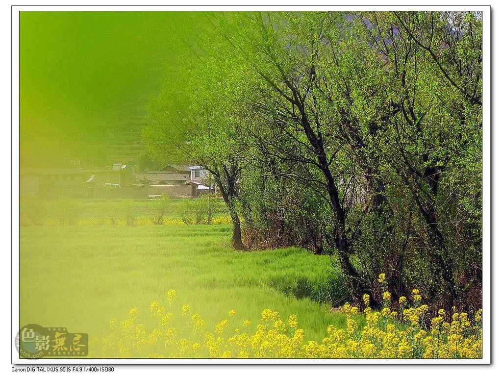 天然气作品:春天的印象