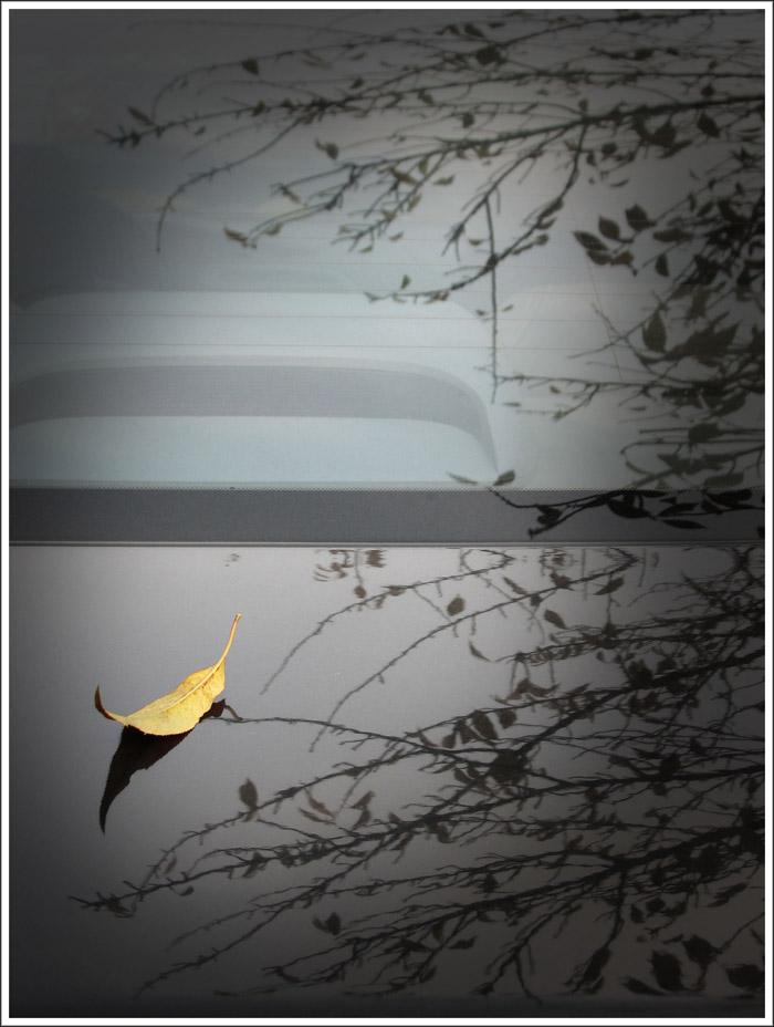 qiyuzhao作品:弯弯的小船