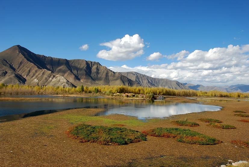 英杰英杰作品:川藏线风景