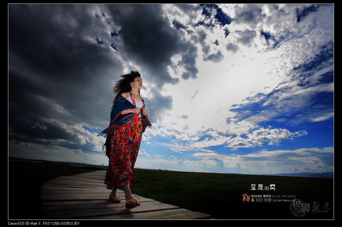 翔文作品:草原的风