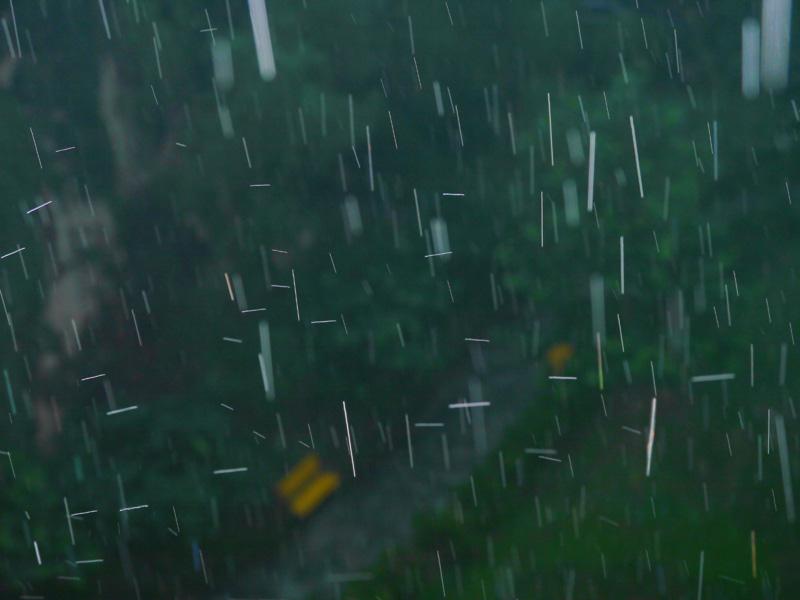 kotea作品:下雨了2