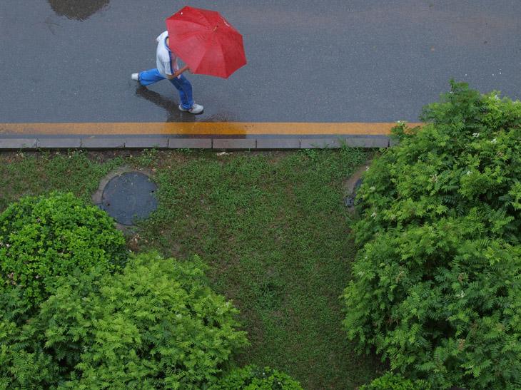 kotea作品:风吹过的下雨天4