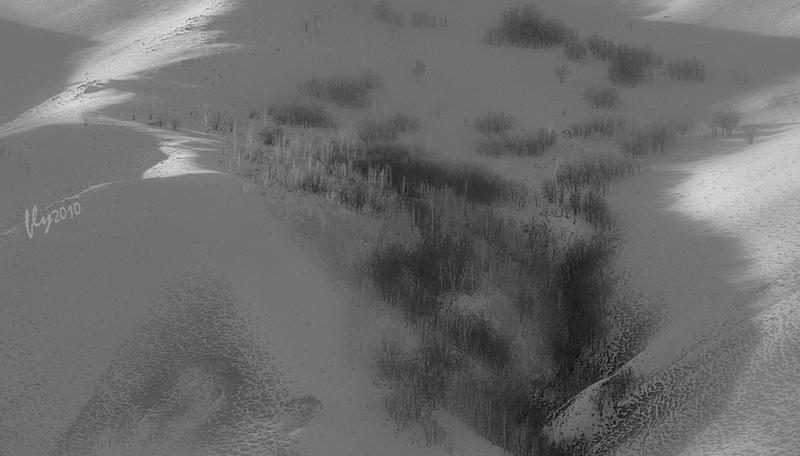 飞白2010作品:山雪