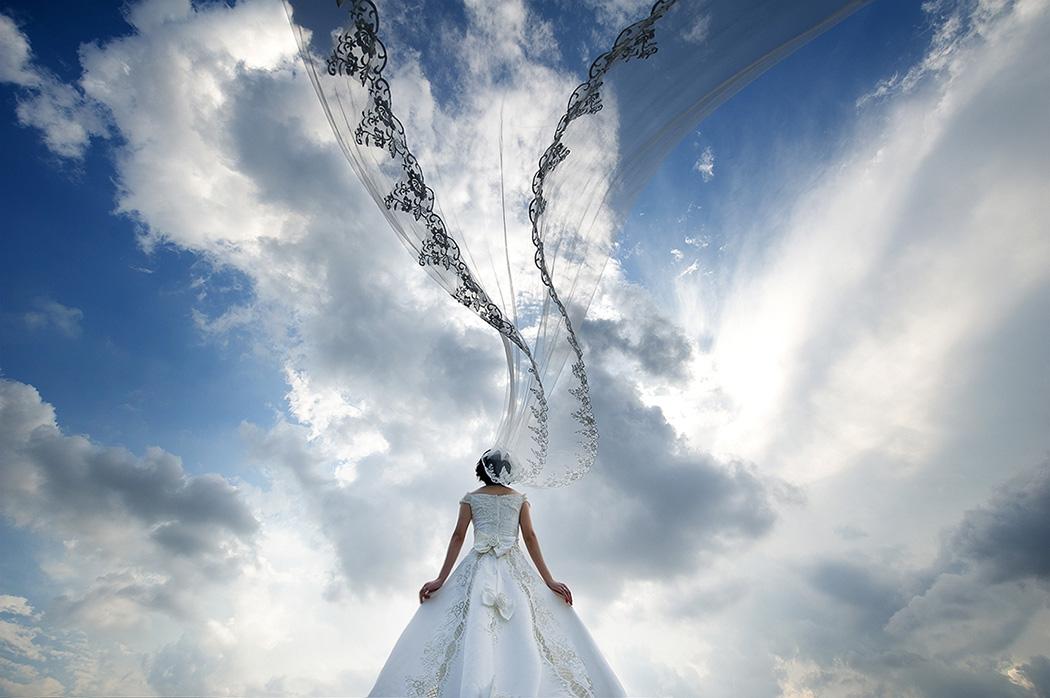 weiweia作品:那飞舞的爱情