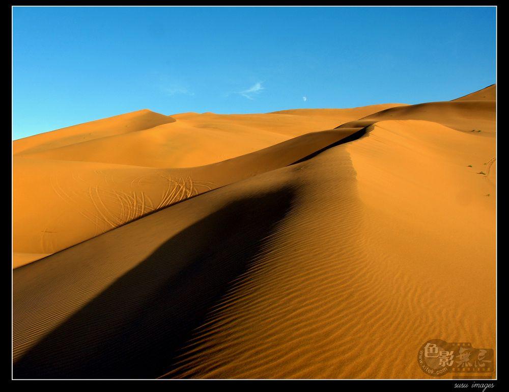 10摄影作品 大漠谣
