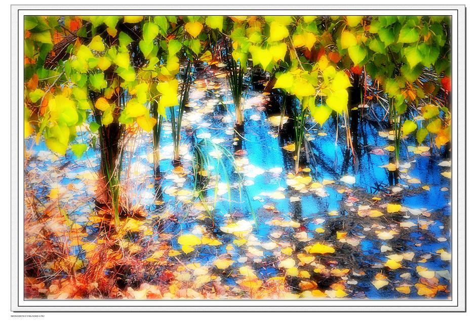 味觉作品:秋的色板