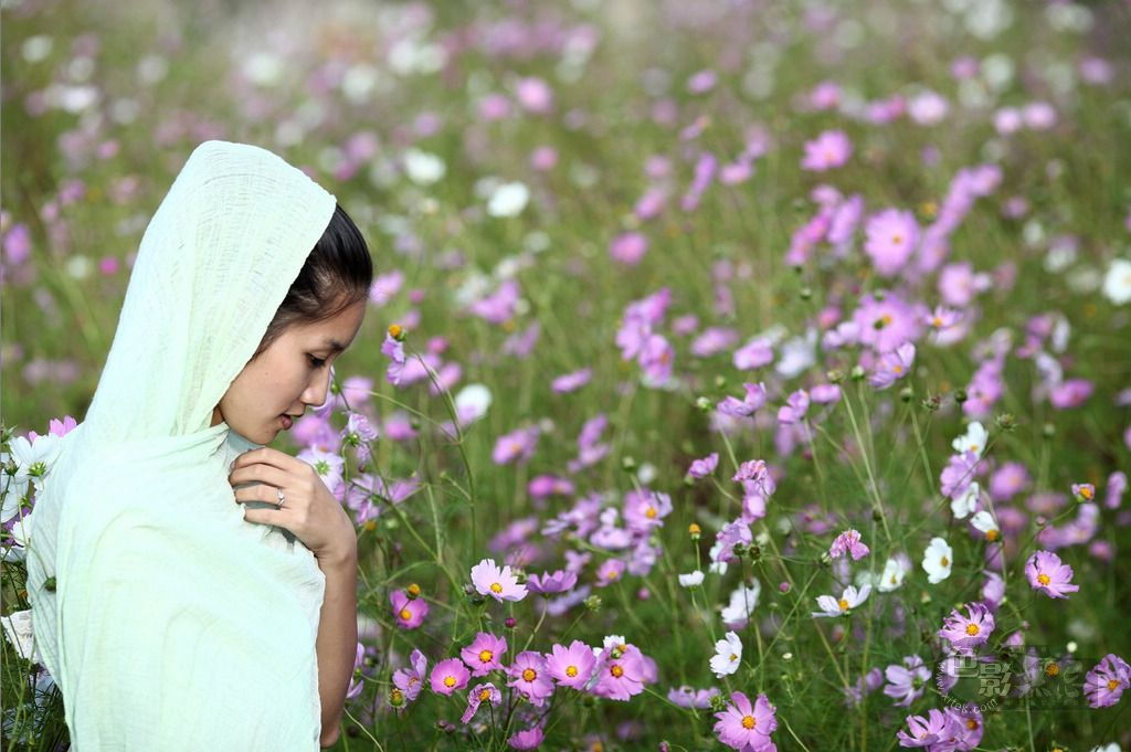 vipliu作品:国庆之花