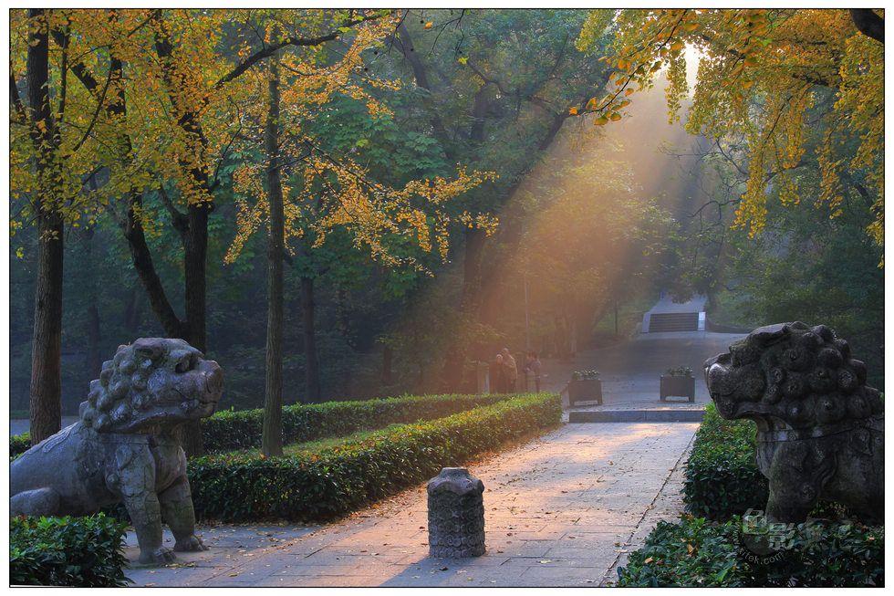 浮光随日作品:石兽秋日晨光中的思绪