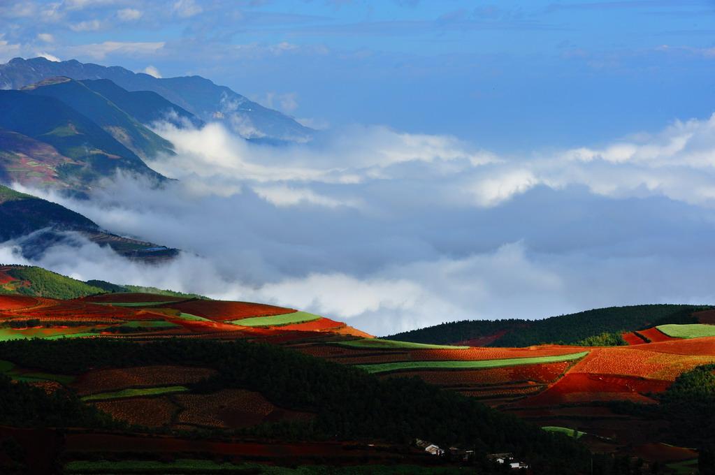 朗摄游作品:云海与红土