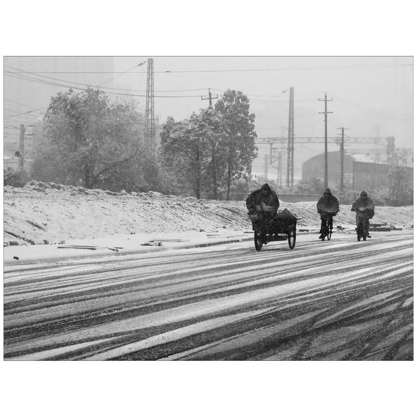 小牛洋洋作品:冬日·路上…