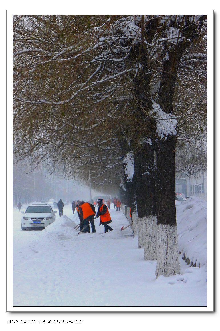 花甲一梦作品:冬日街头——街道卫士