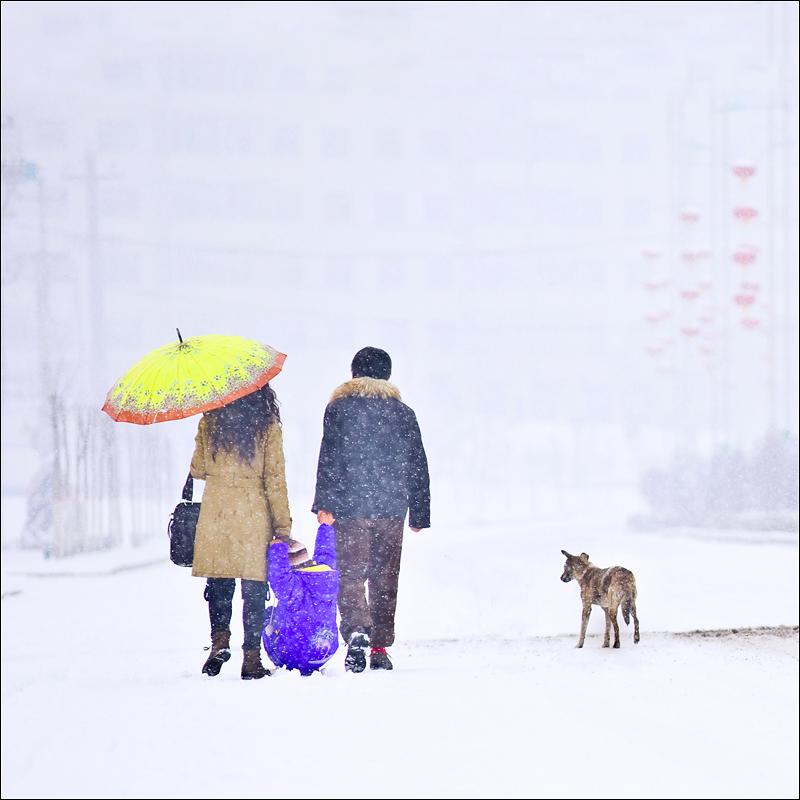 宇宙旁观者作品:雪中那家人