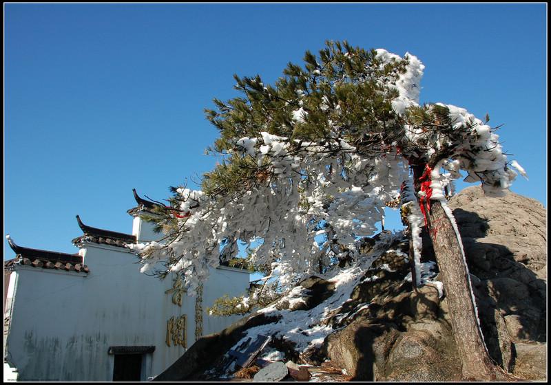 彼岸莲作品:初雪九华-马头墙与雪松