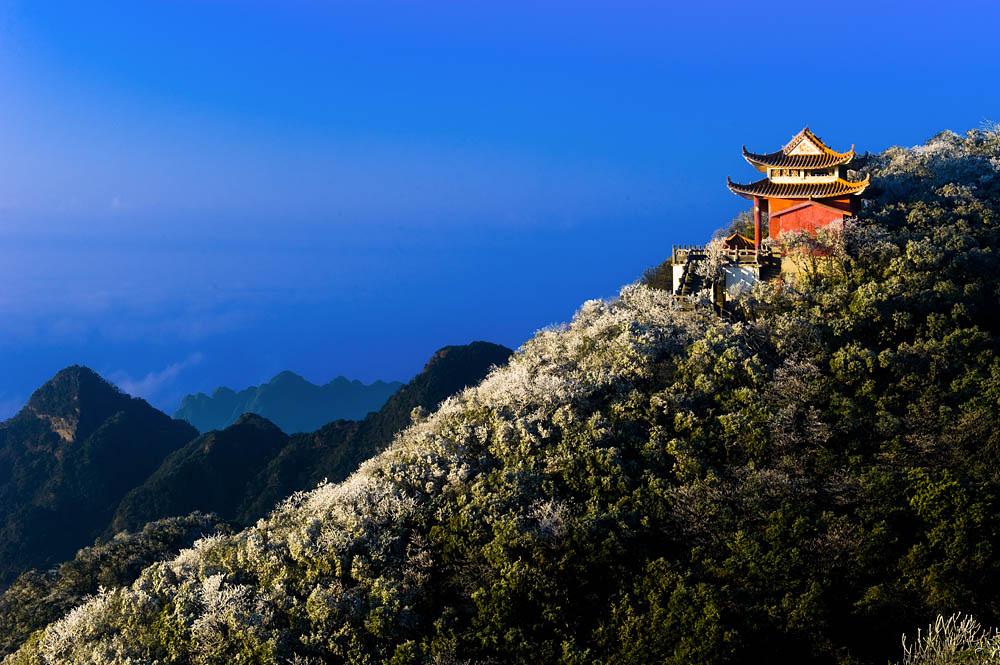 纸虎作品:冬日大明山