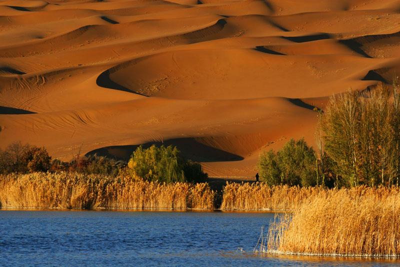 牛民作品:沙漠奇观