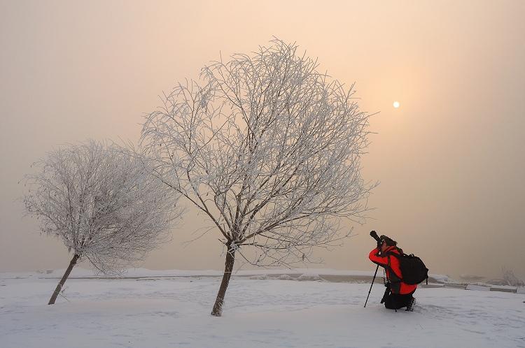 roylgf作品:冬日