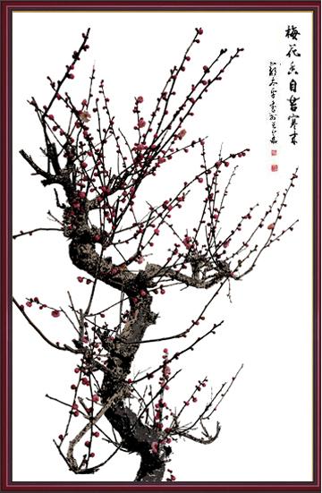 chenanne作品:梅花香自苦寒来