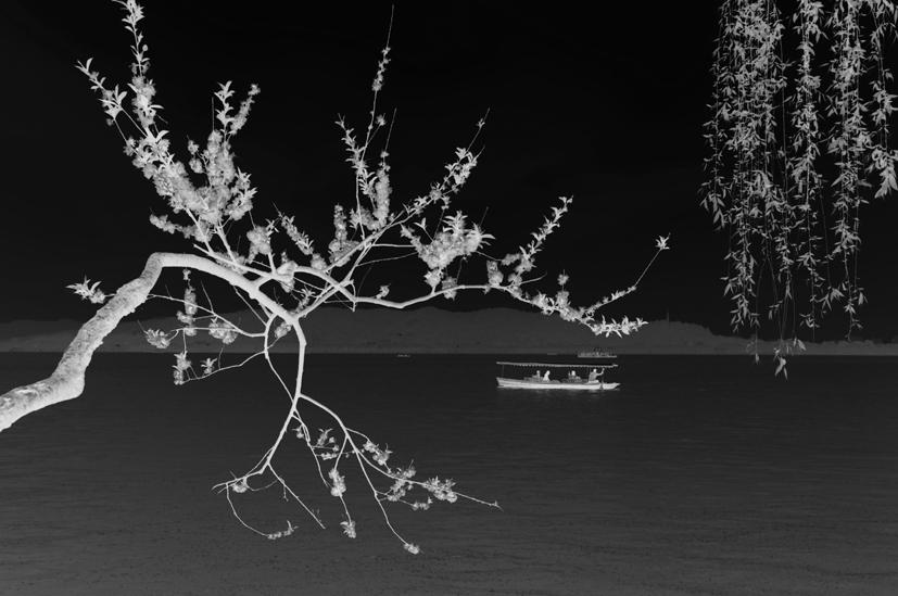 yjhff作品:泛舟西湖