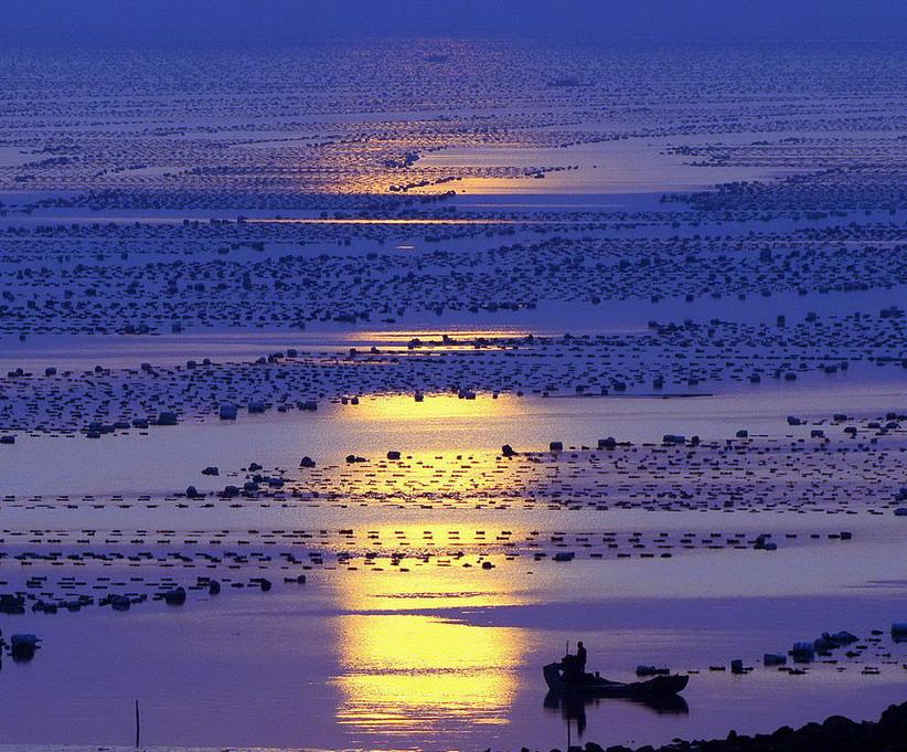 竹林清风作品:清晨的海滩