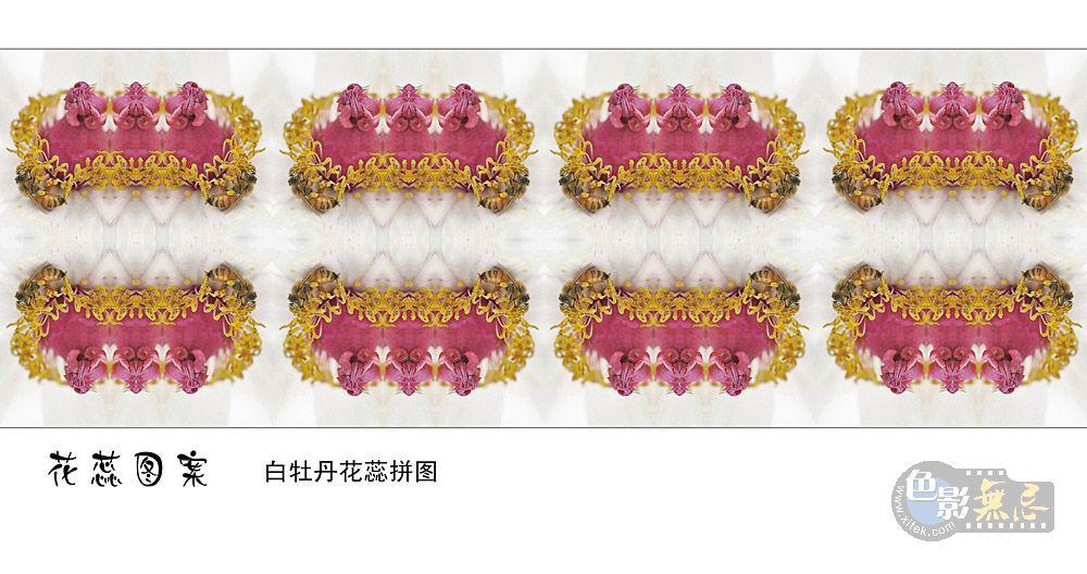 四季春作品:花蕊图案