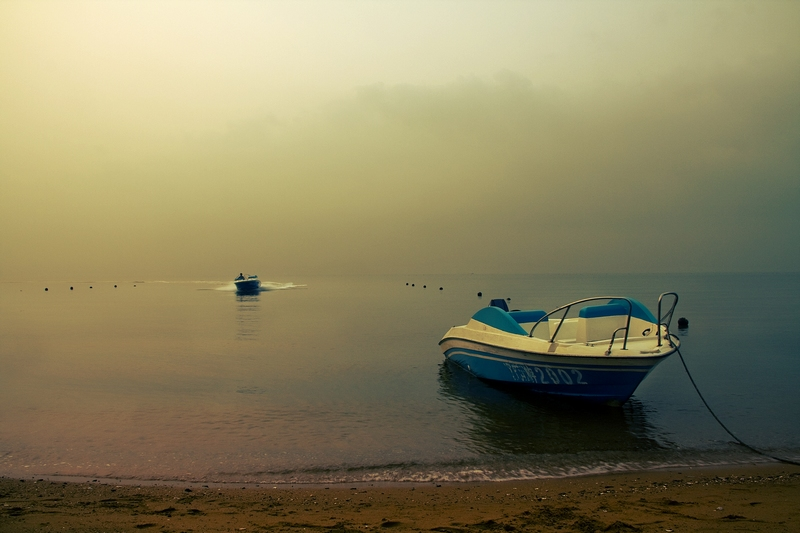 大麦黄作品:清晨的海