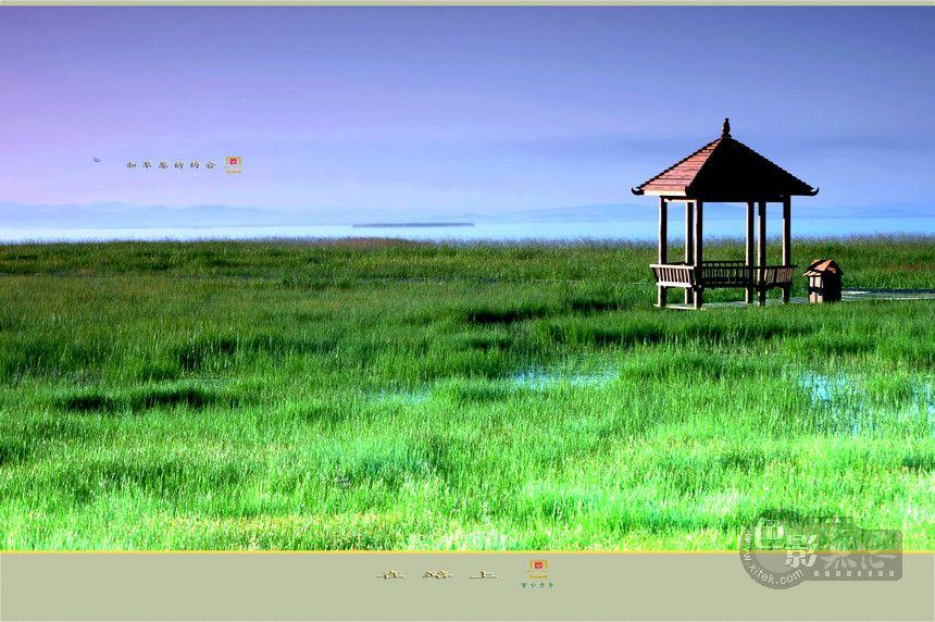 童心老男作品:在路上若尔盖行-和草原的约会