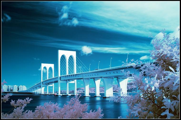 roylgf作品:西灣大橋
