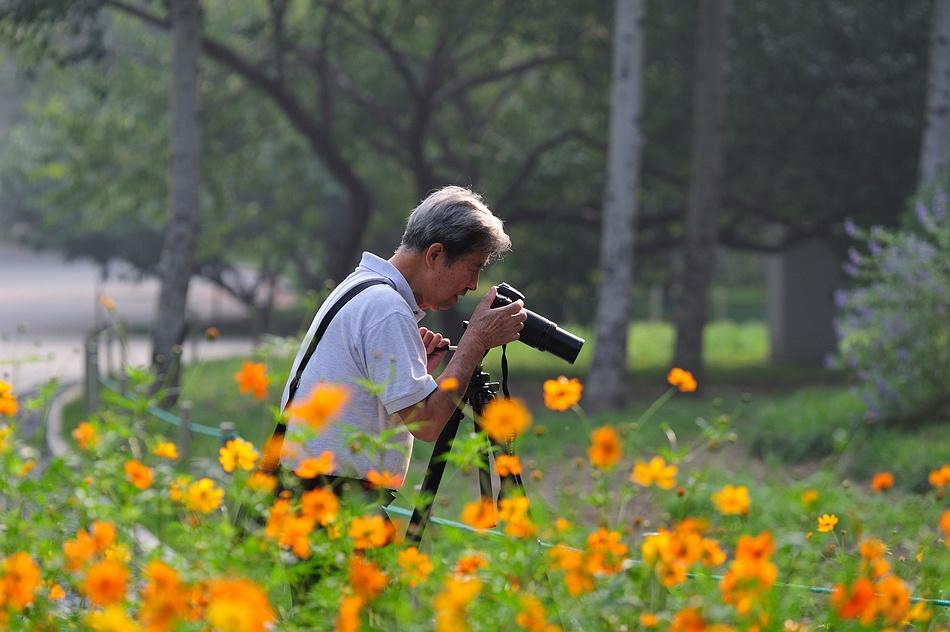 sunge作品:摄影摄影,悠哉悠哉