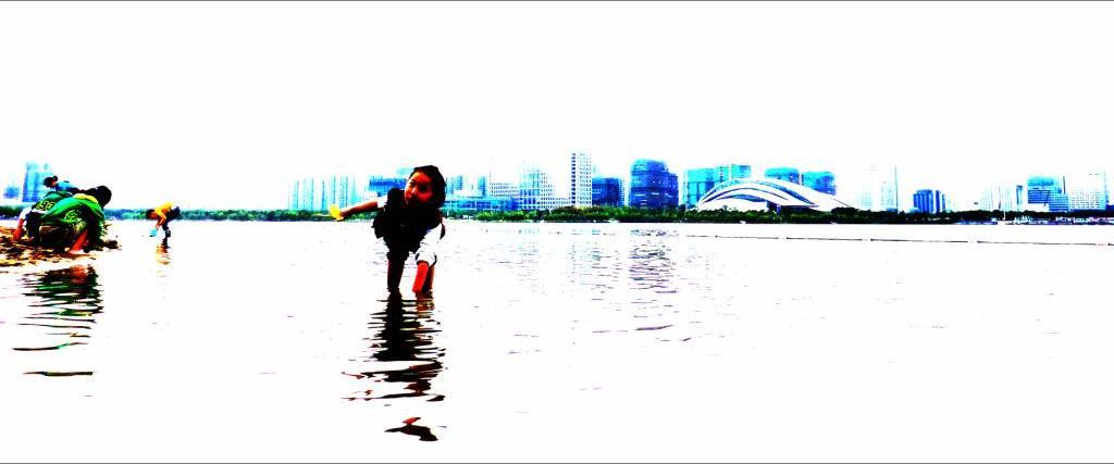 jinz18作品:天鹅湖戏水图