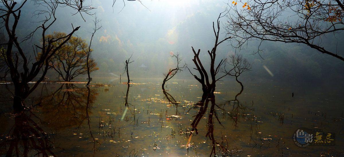 秋痕作品:秋天的童话(二)