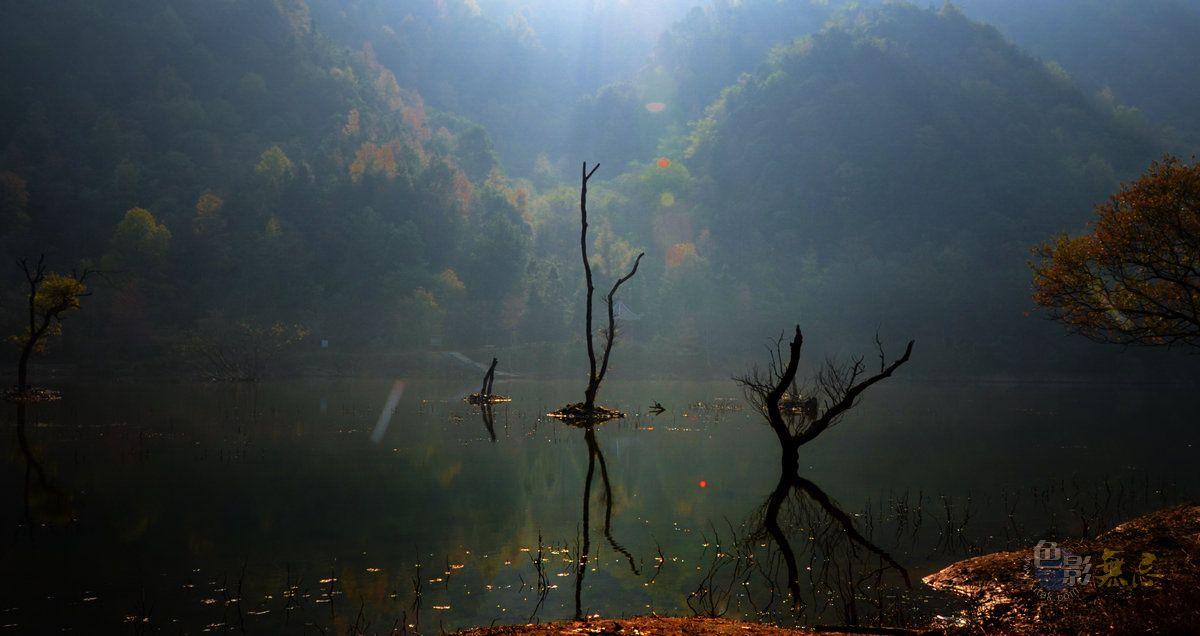 秋痕作品:秋天的童话(三)