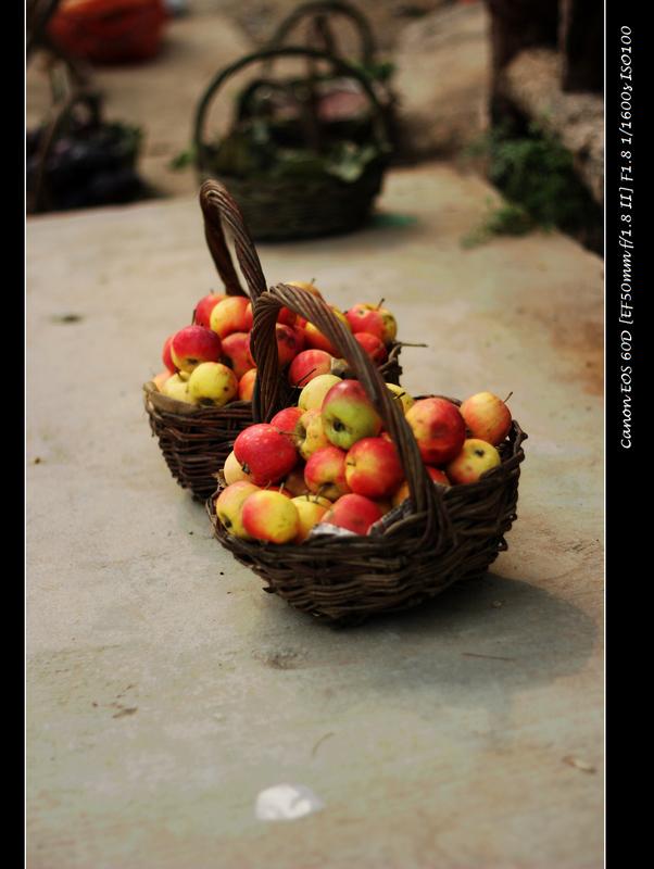 郎一摄影作品 秋天的果实
