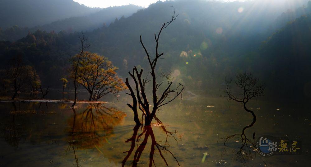 秋痕作品:秋天的童话(六)