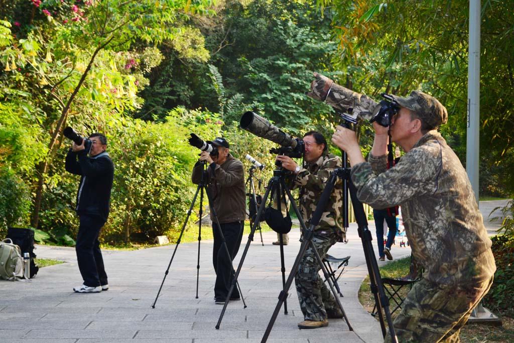 xinxiliu作品:锁定目标,开炮!
