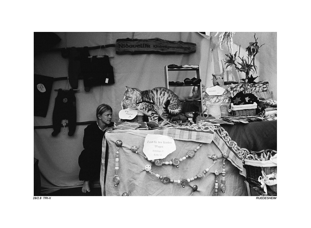 珠海老许作品:中世纪市场(2)