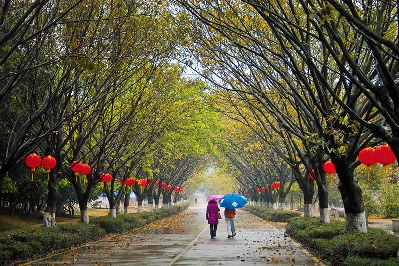 pyxyz作品:雨中的浪漫