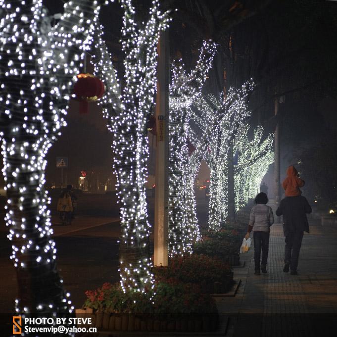 欣赏花儿凋零作品:最美三坊七巷-福州元宵节灯会