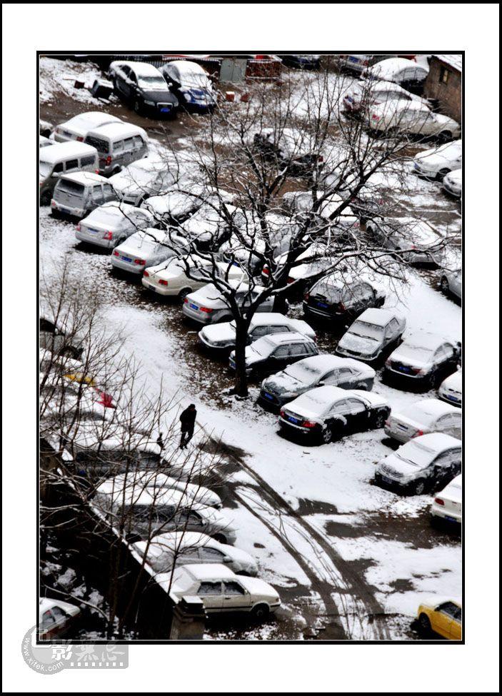 jm300c作品:三月雪