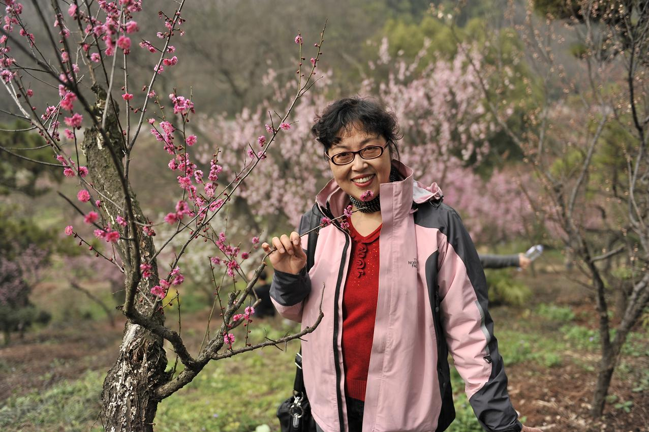 融55作品:南京美丽的梅花山