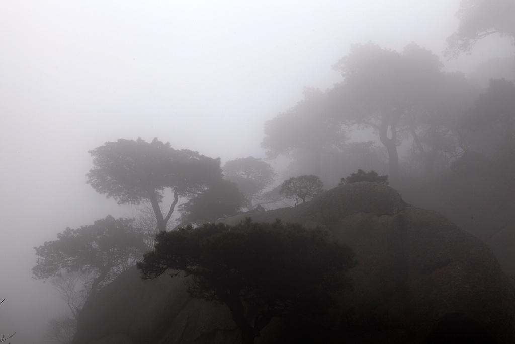 劲舞香溪作品:以雾绘水墨