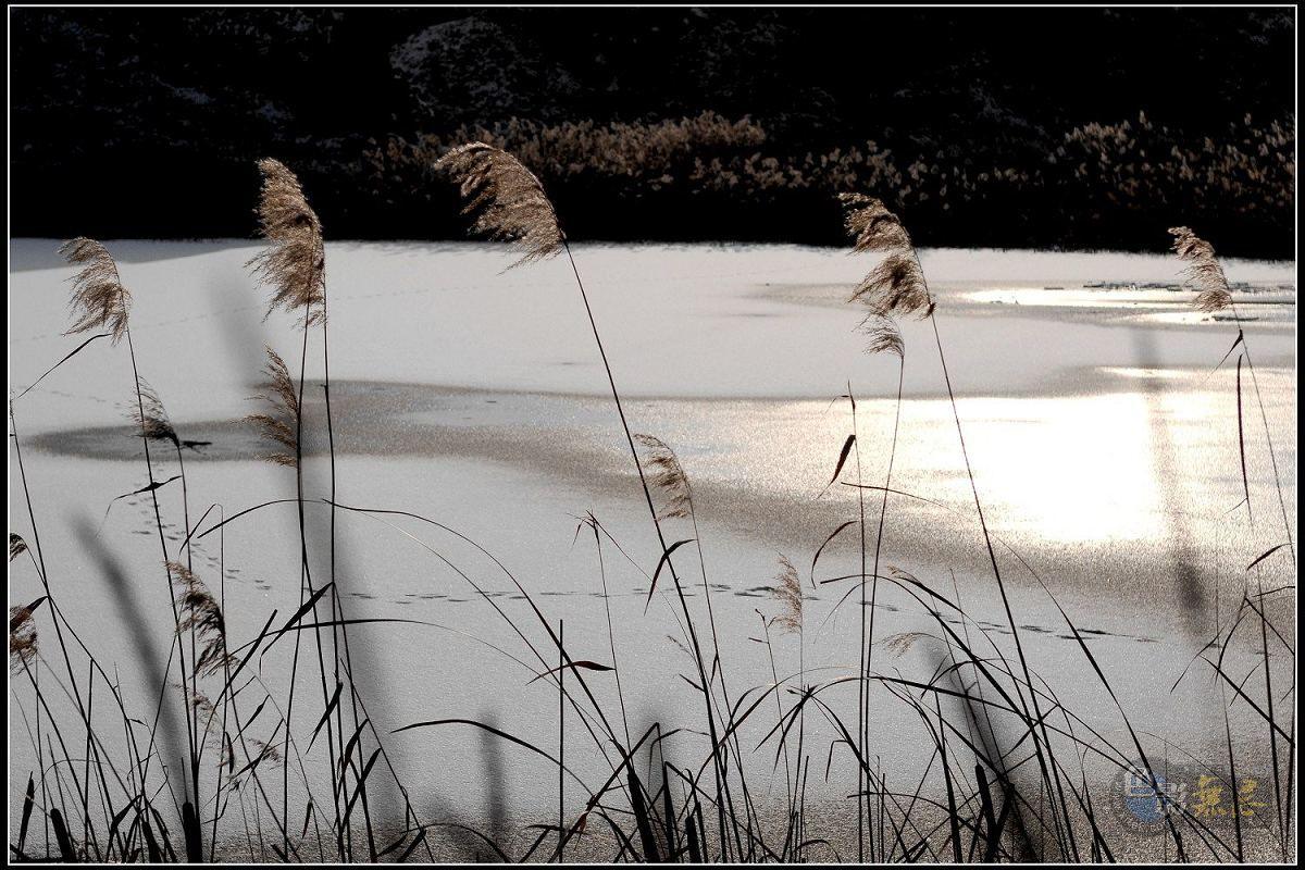 tianli2012作品:暮色冬日