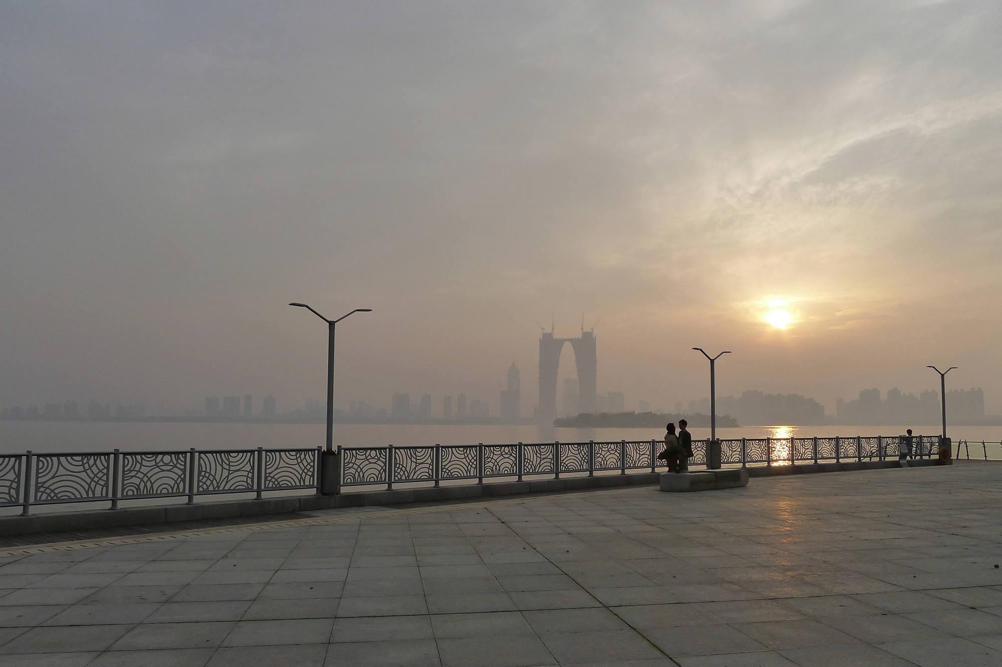 君子兰作品:情定金鸡湖