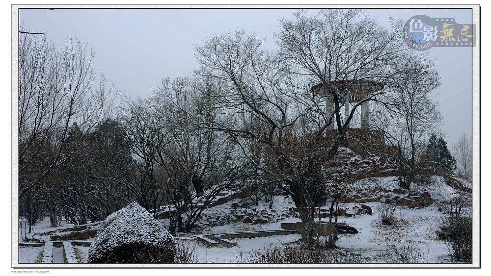 tianli2012作品:公园一景