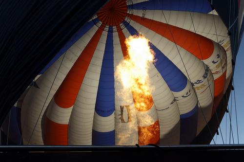 君子兰作品:升腾的火焰(土耳其热气球)